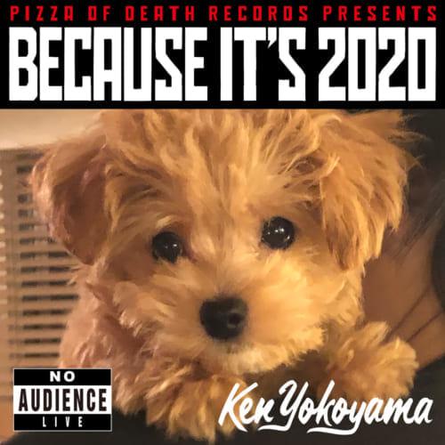 BECAUSE IT'S 2020 / Ken Yokoyama